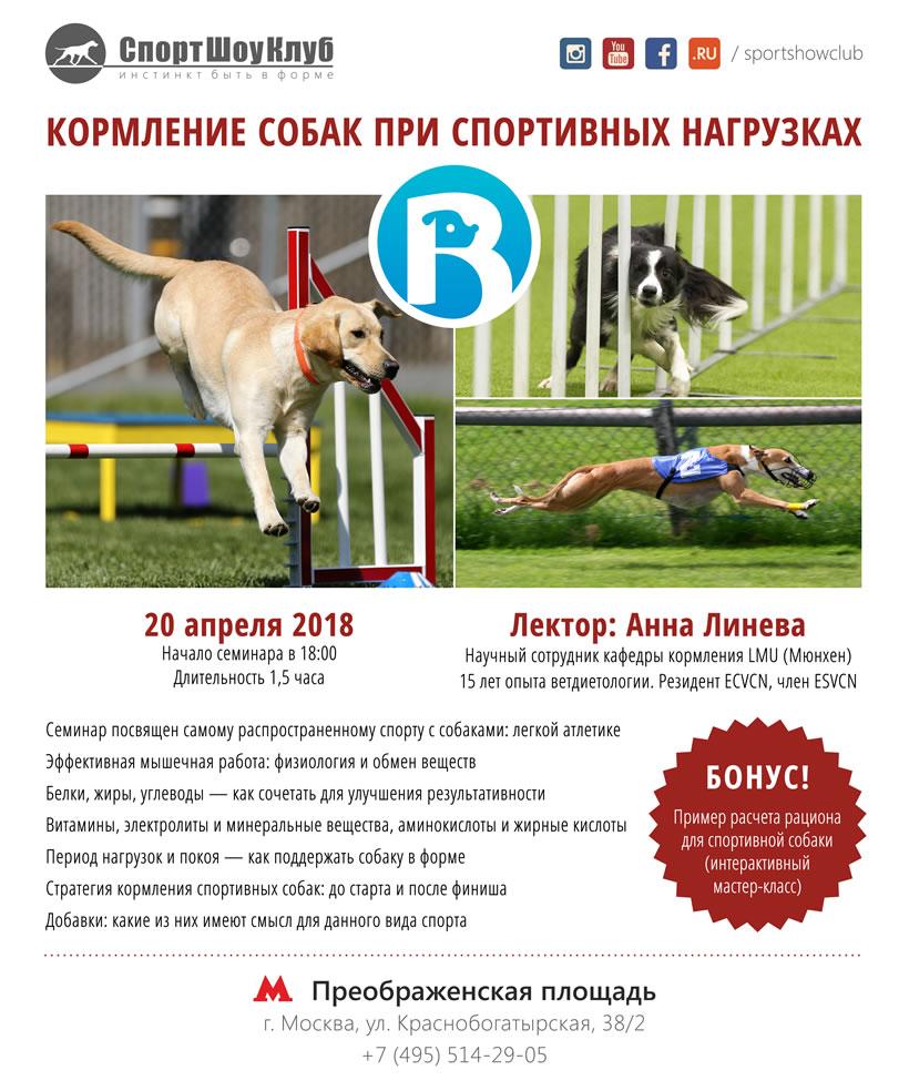 Кормление спортивных собак