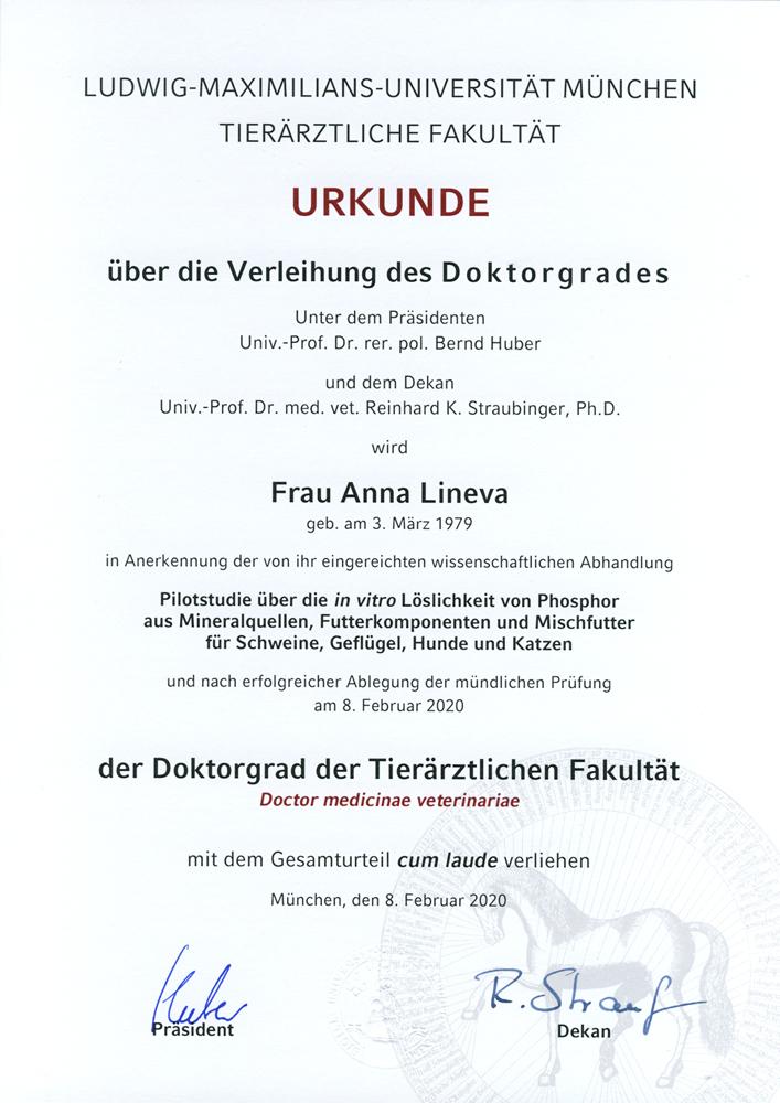 Диплом о получении докторской степени в университете LMU, Мюнхен, 2020 г.