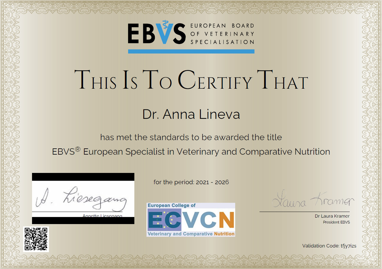 Сертификат дипломанта ECVCN, 2020 г.