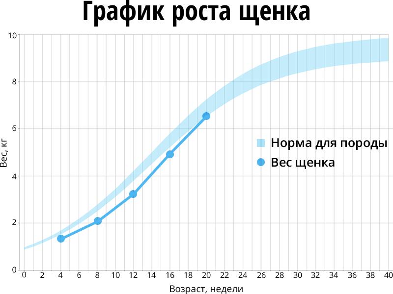 График роста щенка с недостаточным весом