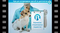 13. Диетотерапия стационарных пациентов. Энтеральное и парентеральное кормление