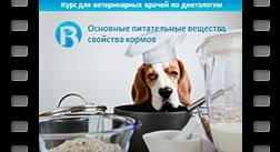 4. Основные питательные вещества, свойства кормовых средств