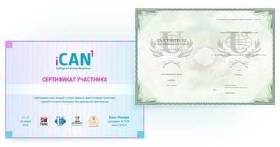 Сертификат государственного образца